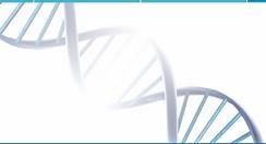Bioquímica - Laboratório de Análises Clínicas