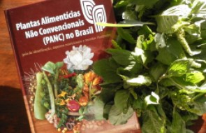 Conhece as plantas PANC?